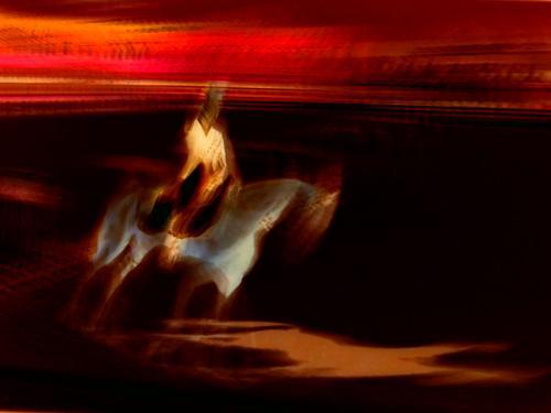 Equestrian Dressage #2